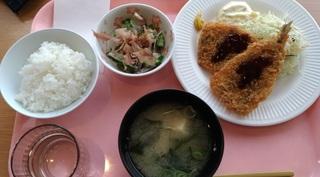 iwashi_fly_teishoku_kenko.jpg